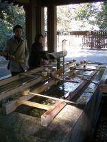 tokyo_meijishrine_yoyogipark_2