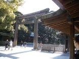 tokyo_meijishrine_yoyogipark_3