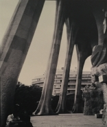 Barcelona_La Sagrada Familia_5