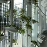 brooklyn_botanic_garden_6